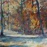 Jeux de lumière en forêt [Huile - 61 x 46]