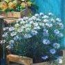 Prêtes à planter [Acrylique - 50 x 40]