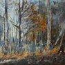 Début d'hiver en forêt [Huile - 38 x 55]
